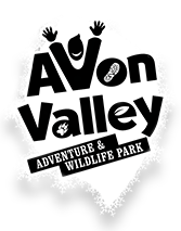 Avon Valley Logo